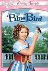 Subtitrare The Blue Bird (1940)