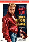 subtitrare Rebel Without a Cause