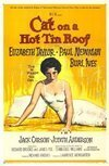 Subtitrare Cat on a Hot Tin Roof (1958)