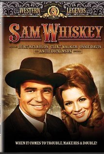 Subtitrare Sam Whiskey (1969)