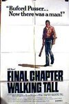 Subtitrare Final Chapter: Walking Tall (1977)