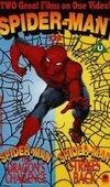 subtitrare Spider-Man: The Dragon's Challenge