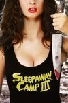 Subtitrare Sleepaway Camp III: Teenage Wasteland (1989)
