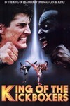 Subtitrare The King of the Kickboxers (1990)