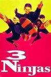 subtitrare 3 Ninjas