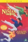subtitrare 3 Ninjas Kick Back