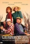Veja o  Grumpier Old Men (1995) filme online gratuito com legendas..