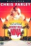 subtitrare Beverly Hills Ninja