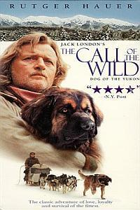 Subtitrare The Call of the Wild: Dog of the Yukon (1997)
