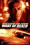Subtitrare Wake of Death (2004)
