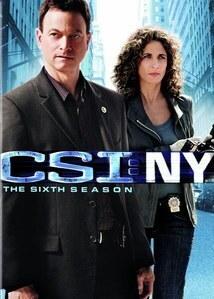 subtitrare CSI: NY - Sezonul 7