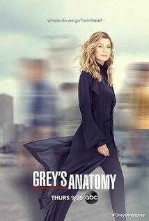 subtitrare Grey's Anatomy - Sezonul 15