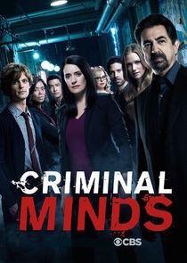 subtitrare Criminal Minds - Sezonul 13