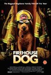 Subtitrare Firehouse Dog (2007)