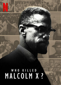 Subtitrare Who Killed Malcolm X? - Sezonul 1 (2020)