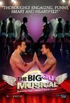 subtitrare The Big Gay Musical