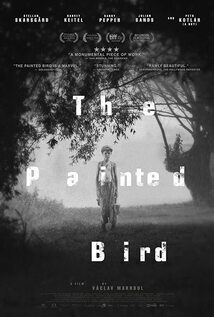 Subtitrare The Painted Bird (2019)