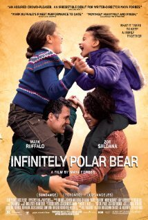 Subtitrare Infinitely Polar Bear (2014)