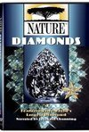 subtitrare PBS Nature - An Original DUCKumentary