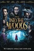 Subtitrare Into the Woods (2014)