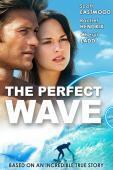 Subtitrare The Perfect Wave (2014)