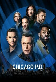subtitrare Chicago PD - Sezonul 5