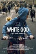 subtitrare White God
