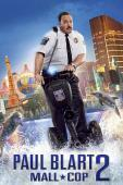 Subtitrare Paul Blart: Mall Cop 2 (2015)