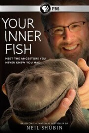 Subtitrare PBS - Your Inner Fish (2014)