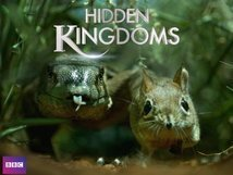 Subtitrare Hidden Kingdoms (TV Mini-Series 2014– ) E3