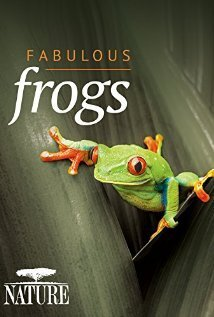 Subtitrare BBC - Natural World - Attenborough's Fabulous Frogs (2014)