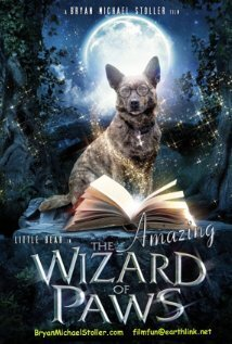 subtitrare The Amazing Wizard of Paws