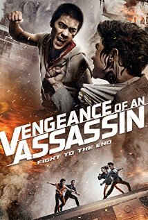 Subtitrare Vengeance of an Assassin (2014)