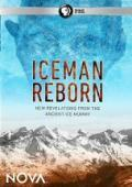subtitrare Iceman Reborn