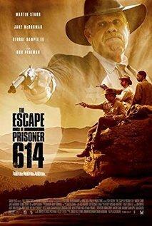 subtitrare The Escape of Prisoner 614