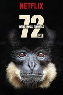 subtitrare 72 Dangerous Animals - Asia - Sezonul 1